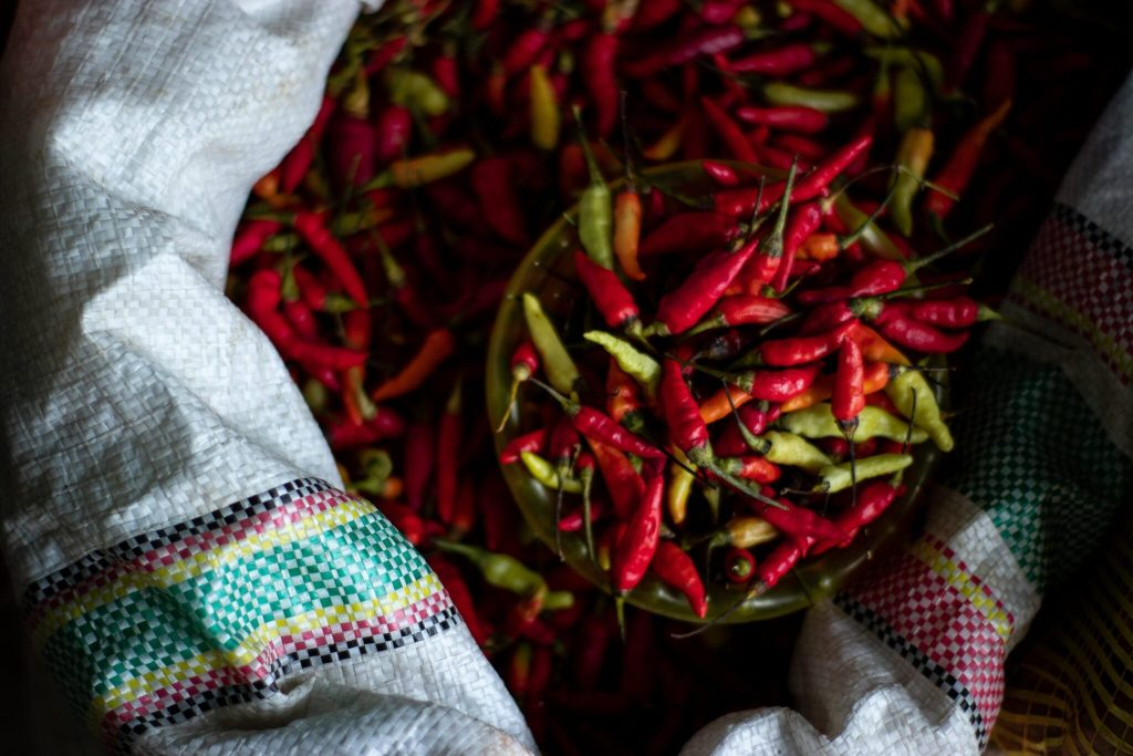 chilies - grow your own